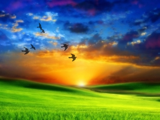 http://emocionesparaelcoaching.files.wordpress.com/2010/03/amanecer-paraiso1.jpg?w=532&h=399